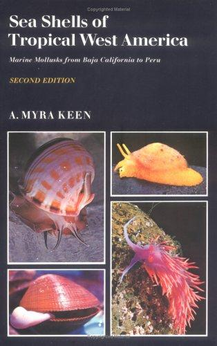 Download Sea shells of tropical west America