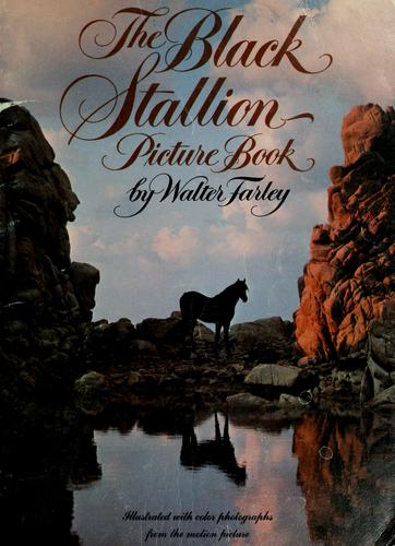The black stallion picture book by Walter Farley